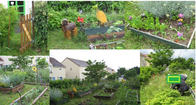 2012-clg-club-jardin-bientot-ete